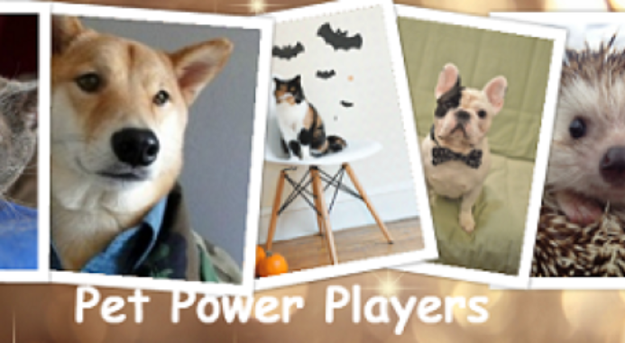 5 Sensational Power Player Pets In Social Media