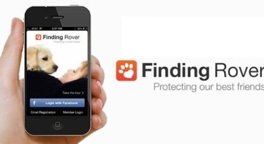 Finding Rover: A Free App That Helps You Find Lost Pets