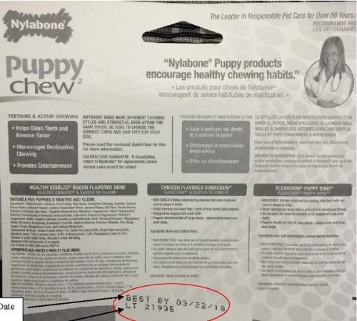 nylabone-puppy-starter-kit-2