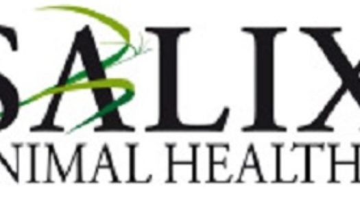 Salix Animal Health Recalls One Lot of Good N Fun – Beefhide Chicken Sticks Dog Treats Due to Salmonella