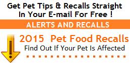 Pet Tips & Recalls