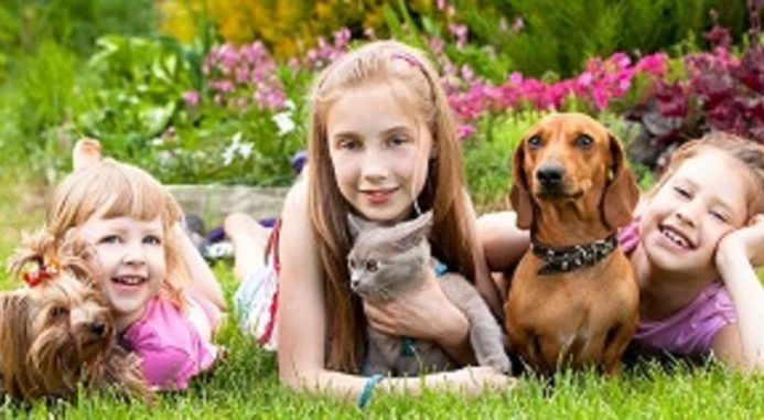 Can Pets Really Decrease Stress In Children?