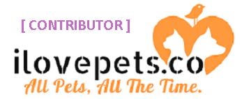 ilovepets.co-contributor