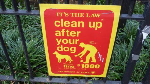 It might be the law to pick up after your pets.