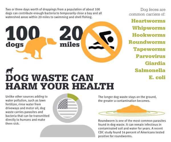 Pollution caused by dog waste.