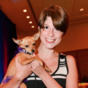 Owning Small Dog Breeds: The Pros And Cons