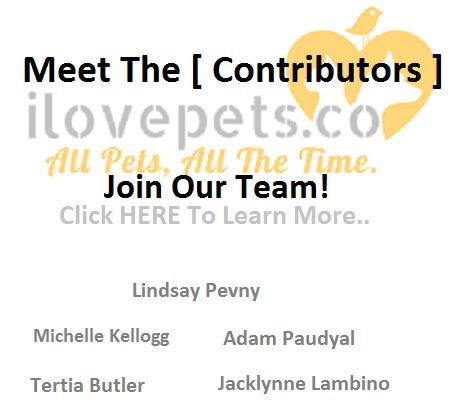 ilovepets.co contributors