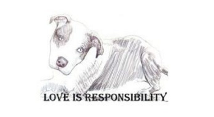 Irresponsible Pet Owners: Love Is Responsibility