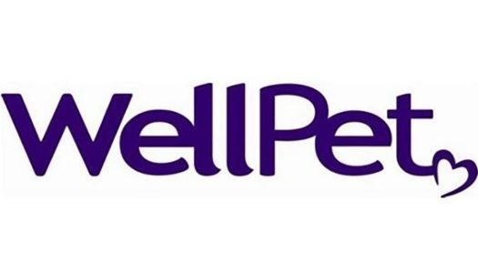 Wellpet Voluntarily Recalls Canned Dog Food Due To Elevated Beef Thyroid Hormone