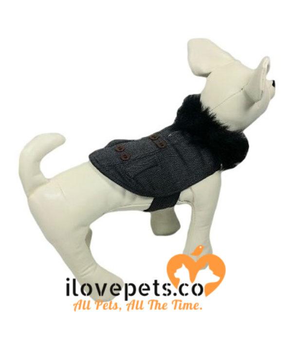 Designer Black Dog Outfit By Fetchwear