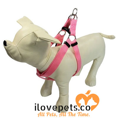 Step-In Dog Harness – For Medium, Large And XL Dogs