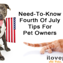 Independence Day And Your Pets: What You Need To Know Before July 4th