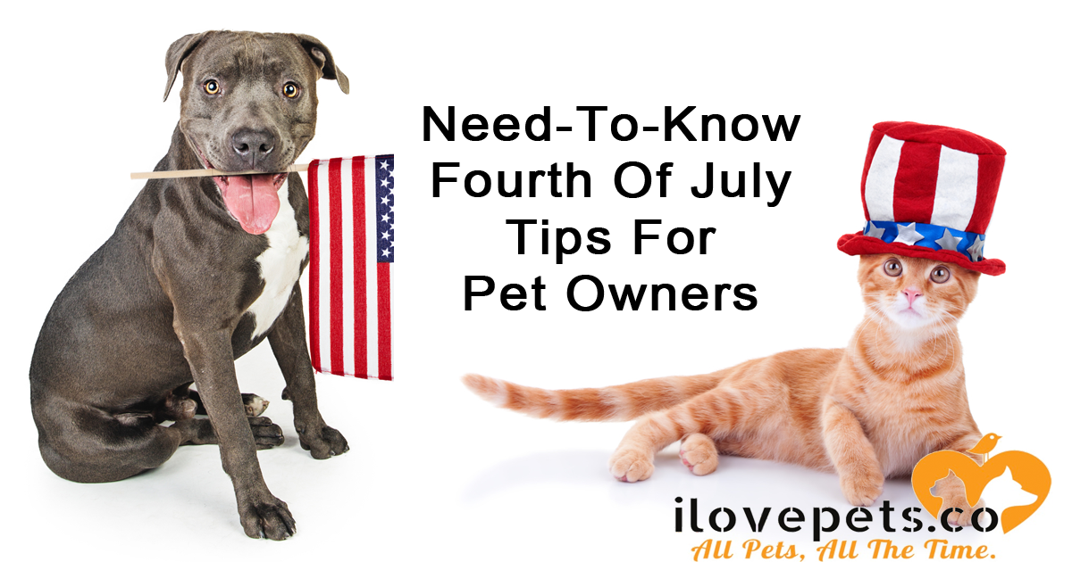 What You Need To Know Before #julyfourth when you have #pets