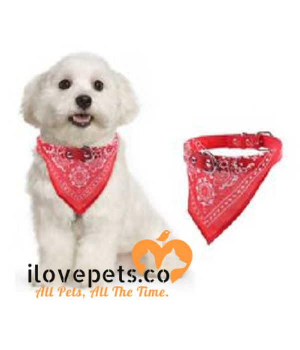 Bandana Style Adjustable Collar