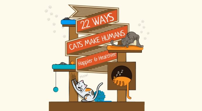 The Amazing Ways Cats Make People Happier And Healthier
