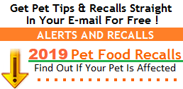 Pet Tips & Recalls
