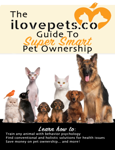 Super Smart Pet Ownership Guide