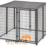Dog Kennels And Pens