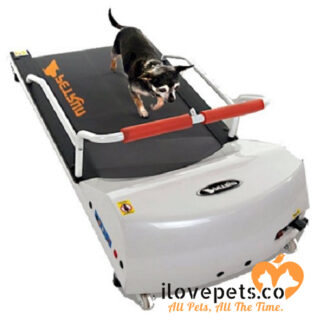 PetRun PR700 dog treadmill