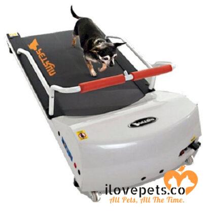 PetRun PR700 dog treadmill