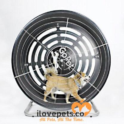 GoPet treadwheel exerciser for dogs