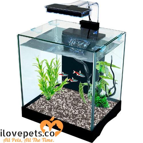 Cascade All-in-One Desktop Aquarium Kit