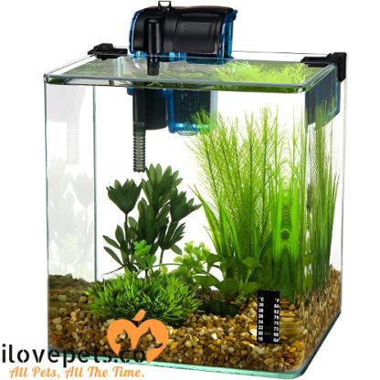 water world vertex 5 gallon aquarium