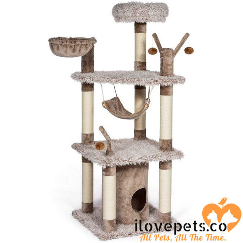 Prevue Pet Products kitty power paws