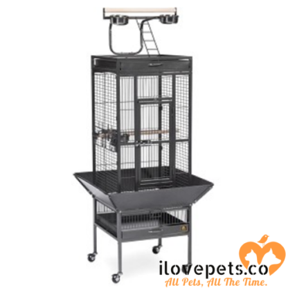 Small Wrought Iron Select Bird Cage black