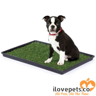 tinkle turf by prevue pet products