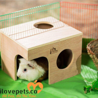 guinea pig wood hut by prevue